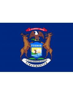 Bandera de Michigan