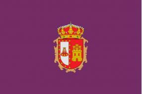 Banderas Burgos