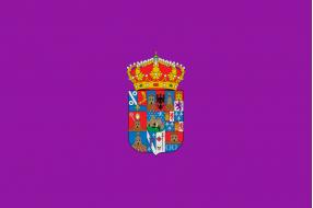 Banderas Guadalajara