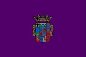 Banderas Palencia